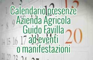 Calendario Presenze